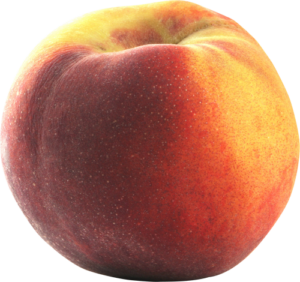 contender-peach_png500-x470